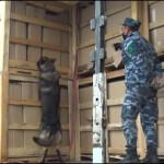Azerbaijan Customs Revealed more than 730kg of Drugs